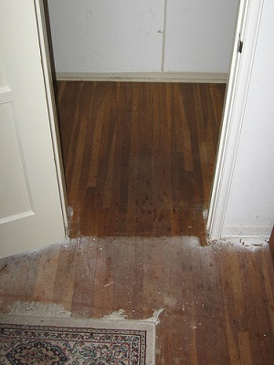 Water Stains On Your Hardwood Floors